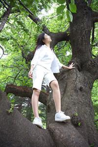 ヒプノセラピーについて  マインドエイト大阪